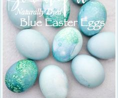 BEAUTIFULLY NATURALLY DYED BLUE EASTER EGGS- MAKE A BASKET FULL OF THESE AMAZING BLUE EGGS!