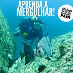 Andrea Chiarelli Guimarães, 35 anos, deixou São Paulo para se casar com o Rodrigo Guimarães, instrutor de mergulho e dono de uma empresa de mergulho, a Operadora Una Dive, em Paraty, no litoral do Rio de Janeiro.
