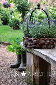 Lavender in s basket Mehr (back yard garden) Garden Cottage, Garden Pots, Garden Basket, Garden Ideas, Herb Garden, Pot Jardin, Patio Plants, My Secret Garden, Garden Styles