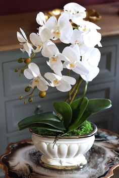 Orchid Flower Arrangements, Orchid Planters, Flowers Nature, Exotic Flowers, Silk Orchids, Growing Orchids, Artificial Flowers, Flower Decorations, Indoor Plants