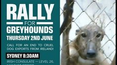 Petition update · Update on tomorrow's rallies in Dublin, Sydney and Perth · Change.org