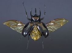 Organisms combine with mechanics to create new, hybrid life forms which stride into the future in a more resistant, more efficient, and technically optimised form. Steampunk Animals, Insect Art, Life Form, Retro Futurism, Design Art, Spider, Insects, Creatures, Fantasy