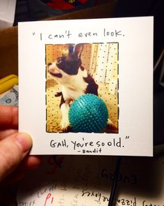 A personal favorite from my Etsy shop https://www.etsy.com/listing/488321330/boston-terrier-birthday-card-famous