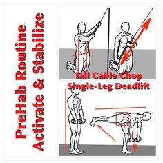 Motivated to exercise hard today? Use these two exercises in your PreHab warm-up to help Activate and Stabilize your Hips, Core and Ankles.  Tall Cable Chop: Activates the Core and Stabilizes the Spine-Hip alignment.  Single-Leg Deadlift: Activates and Stabilizes the Hips and Ankles. Do 2-3 sets of 5-10 reps on each side.  Perform these exercises with as much control as possible!  #prehab   Learn more at www.prehabexercises.com or like our Facebook Fan page at…
