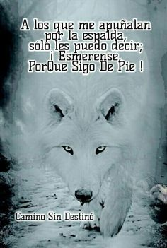 Spanish Inspirational Quotes, Spanish Quotes, Wolf Warriors, Wolf Life, Lines Quotes, Quotes En Espanol, Wolf Quotes, Wolf Pictures, The Ugly Truth