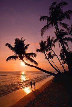 Love sunset walks on the beach - Maui, Hawaii. We walked the beaches at sunrise and sunset in Maui in April SO IN LOVE WITH MAUI! Amazing Sunsets, Beautiful Sunset, Beautiful Beaches, Amazing Places, Places To Travel, Places To See, Sunset Photos, Belle Photo, Vacation Spots