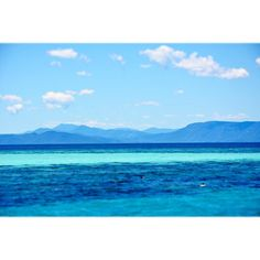 Next stop: Michaelmas Cay/ Great Barrier Reef/ Cairns #willjourney #mytinyatlas #cairns #michaelmascay #greatbarrierreef #seeaustralia #australia #discoverqueensland #traveltheworld #travel #instatravel #ocean by prettynicethings http://ift.tt/1UokkV2