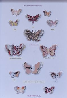 Edition Poshette papillions