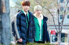 Inseong & Hwiyoung // SF9