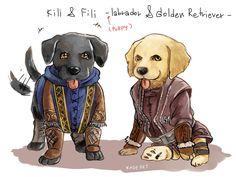 Dwarf dog of Erebor