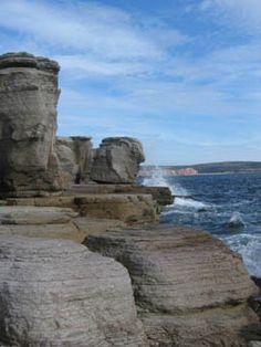Sheaves Cove, Newfoundland, Canada
