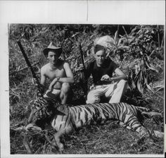 2 French soldiers, 1951 w. an Imperial tiger they killed in French Indochina. I wonder what happened to them by 1954