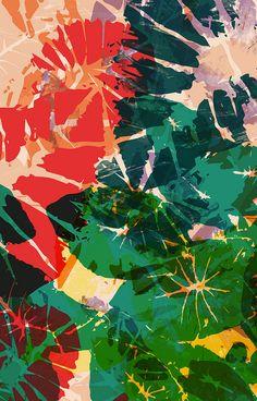 Calladium | Abstract Leaf Print