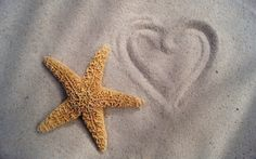 beach starfish sand heart wallpaper