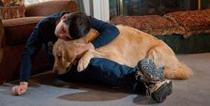 APCA – Associação Portuguesa de Cães de Assistência – e o trabalho que desenvolvem junto de pessoas com necessidades especiais. Rui Elvas, Presidente da APCA, explica de que forma podem os cães contribuir para uma maior qualidade de vida destas pessoas.