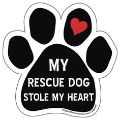 Imagine This Paw Magnet, My Rescue Dog Stole My Heart -- See this great image  : Dog Memorials