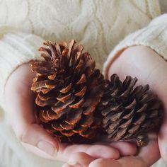 Winter by *TheCameraGirl on deviantART
