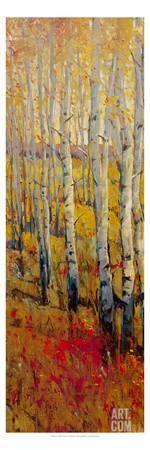 Vivid Birch Forest I Art Print by Tim O'toole at Art.com