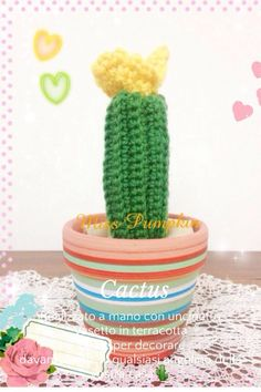 Uno dei miei primissimi cactus