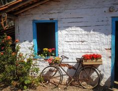 Holandês que se preza tem uma bicicleta em casa.