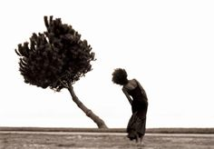 Ir a donde el viento sopla no siempre es pasividad. A veces es estrategia y habilidad para aliarse con fuerzas superiores a las nuestras. (Gustav A. Newman)