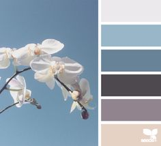 Orchid Hues - http://design-seeds.com/home/entry/orchid-hues3