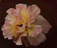 Pink Rose by Anneke Newman Pastel ~ 25 x 25