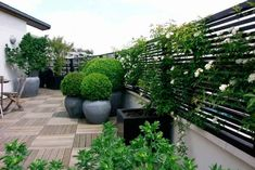Terrace and Balcony - Accents of France – Treillage Backyard Fences, Garden Landscaping, Fence Garden, Garden Trellis, Garden Beds, Terrace Design, Garden Design, Patio Design, Landscape Design