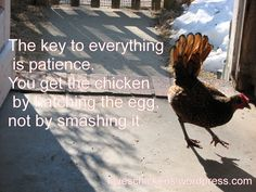 The key to everything....