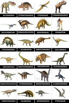 memory_a_imprimer_dinosaures_zoom. Dinosaurs Names And Pictures, Dinosaur Pictures, Images Of Dinosaurs, All Dinosaurs, Dinosaur Posters, Dinosaur Cards, Dinosaur Template, Dinosaur Play