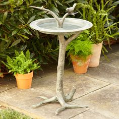 Bird & Branch Birdbath | Charming and sophisticated, this intricate birdbath features a sundial bowl with a large faux aluminum branch stand that rests securely on any flat surface. The branch extends through the bowl and showcases a lovebird statue. Each birdbath is finished by hand and may vary in color.