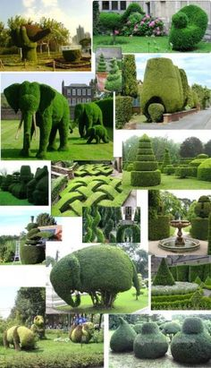 The word topiary is not common among many people. It is simply a way to give proper shape to the hedges and trim them in a perfect manner. This art of giving proper shape to the hedges is quite popular in all over the world. Garden Paths, Garden Art, Garden Design, Formal Gardens, Outdoor Gardens, Amazing Gardens, Beautiful Gardens, Landscape Architecture, Landscape Design