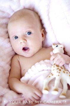 The ever popular Sophie the Giraffe