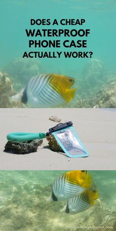 what to pack for beach vacation. waterproof phone case. phone pouch. cell phone dry bag. what to pack for hawaii. oahu. honolulu. maui. kauai. big island. kona. caribbean. swimming. Underwater Video, Underwater Pictures, Beach Trip Packing, Travel Packing, Hawaii Vacation, Hawaii Travel, Waterproof Phone Case, Travel Destinations Beach, What To Pack