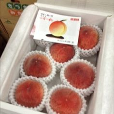 ハウスもも 山梨県  House Peach Yamanashi