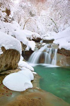 Vincenzo Mazza -Paesaggi d'Abruzzo, la foresta incantata