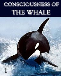Consciousness of the Whale - Part 1