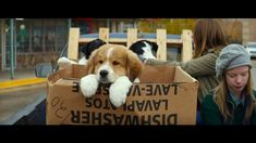 A DOG'S PURPOSE - OFFICIAL TRAILER [HD]