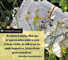 Książki - cytaty, sentencje, aforyzmy o książkach Motto, Words, Quotes, Anime, Plants, Qoutes, Anime Music, Planters, Quotations