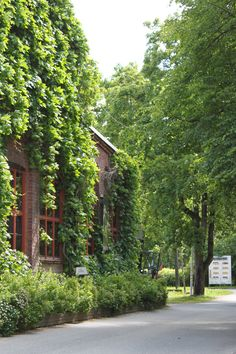 The glass studio is covered in green during the summer. Glass studio Mafka&Alakoski works in a premises of a former glass factory in Riihimäki, Finland.