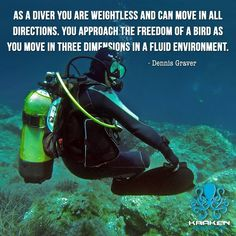 We define diving as the best experience ever. Find our amazing sets of diving, snorkeling and swimming products at: krakenaquatics.com #diving #scuba #sea #underwater #scubadiving #gopro #ocean #diver #underwaterphotography #nature #fish #travel #scubadive #beach #freedive #freediving #spearfishing #sealife #summer #water #uwphotography #adventure #reef #photooftheday #blue #krakenaquatics #quotes #motivationalquotes #natgeo #natgeotravels #scubadivingquotestheocean…
