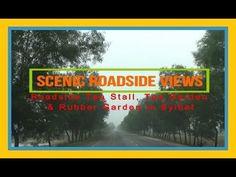 Scenic Roadside Views , Tea Stall, Tea Garden, Rubber Garden  | Sylhet, ...