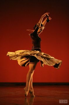 the life and dance career of marius petipa Petipa's spanish salad days  the racier moments of petipa's career marius petipa began his life in the shadow of  when he was invited to dance in.