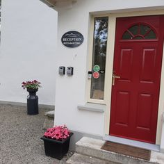 We love to spend time in the garden watching all the new plants blossom. Family Getaways, Holiday Accommodation, Evening Meals, Dublin Ireland, Guest Bedrooms, Summer Garden, B & B, Bed And Breakfast, Cottages