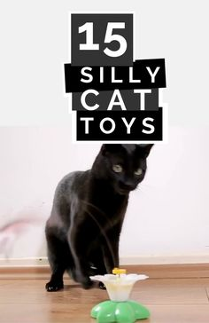 Treat your favorite feline to some new and creatively fun DIY cat toys that are sure to be a hit. Check out the homemade cat toy ideas in this list for inspiration and make one today! #cats #cat #DIYcattoys #cattoys #kitty Homemade Cat Toys, Diy Cat Toys, Fun Diy, Easy Diy, Silly Cats, Pet Tips, Diy Stuffed Animals, Four Legged, Kitty