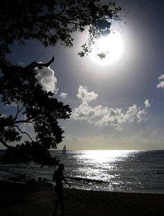 Reflejos de luna llena .-