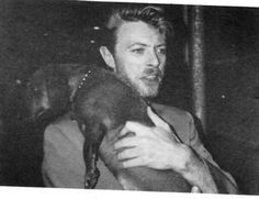 David Bowie & Doxie: Bowie Dachshunds, Famous People, Bowie Doxie, Celebrities With