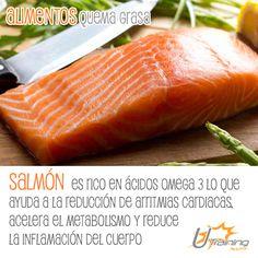 Puedes encontrar #Omega3 en alimentos como el #Salmón, contiene muchos nutrientes y ayuda a quemar grasas.