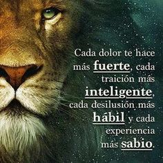 Image may contain: text Positive Phrases, Motivational Phrases, Positive Quotes, Inspirational Quotes, Lion Quotes, Spanish Quotes, Life Motivation, Narnia, Woman Quotes