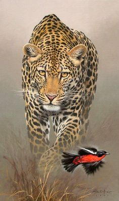 New Cats Sleeping Heavens Ideas Wildlife Paintings, Wildlife Art, Animal Paintings, Animal Drawings, Big Cats Art, Cat Art, Aigle Animal, Super Cat, Cat Sleeping